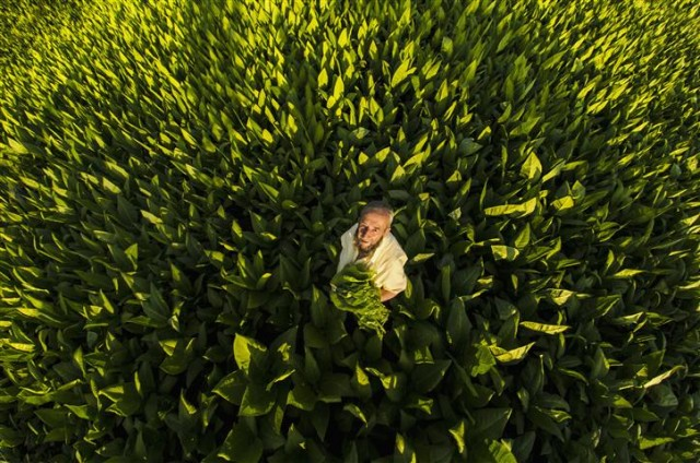 'Bu Toprağın Renkleri' fotoğraf yarışması