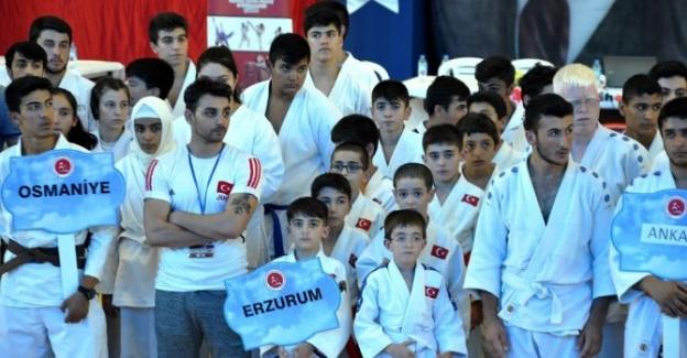 Jiu-jitsu'da 14 Altın Madalya
