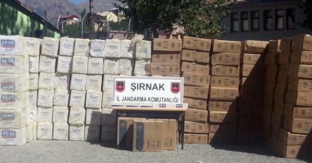 Şırnak'ta 77 Bin Paket Kaçak Sigara Ele Geçirildi