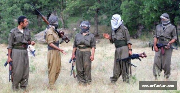 PKK'dan şok karar!