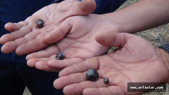 Urfa'dan bile gidip o taşları arıyorlar!