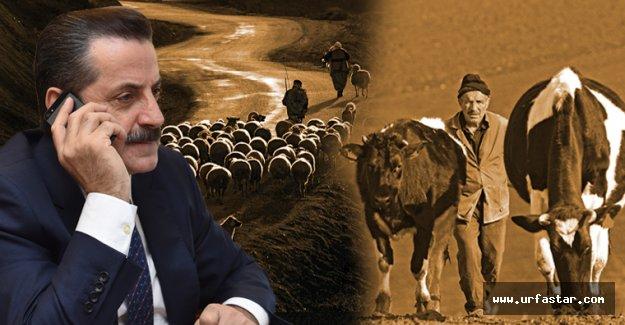 Bakan Çelik hayvan yetiştiricilerinin sorunlarını dinledi