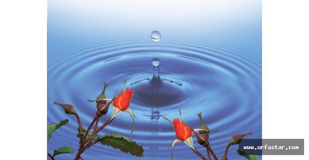 """""""Geleceğe Bir Damla Su"""" çalıştayı yapılıyor"""