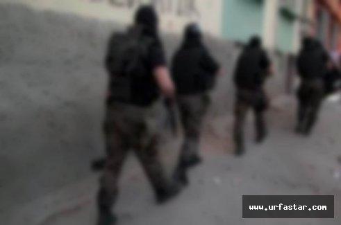 Viranşehir'de şafak operasyonu