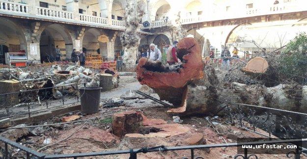 Eyyübiye Belediyesi, olası faciayı önledi