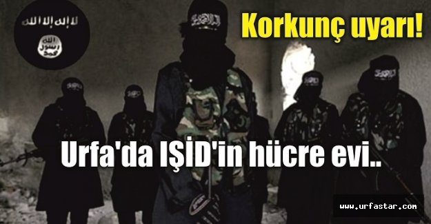 IŞİD'in hücre evleriyle ilgili şok iddia!