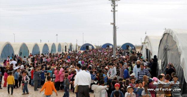 İşte Urfa'daki Suriyeli öğrenci sayısı..