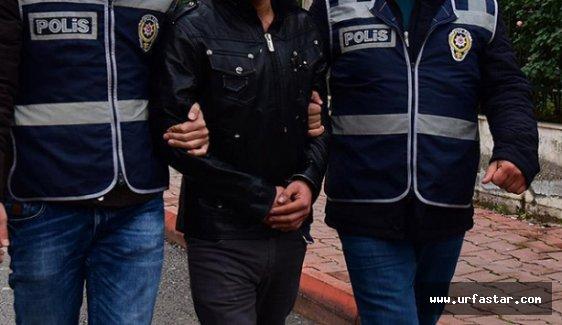 Urfa'da biri canlı bomba 4 PKK'lı tutuklandı