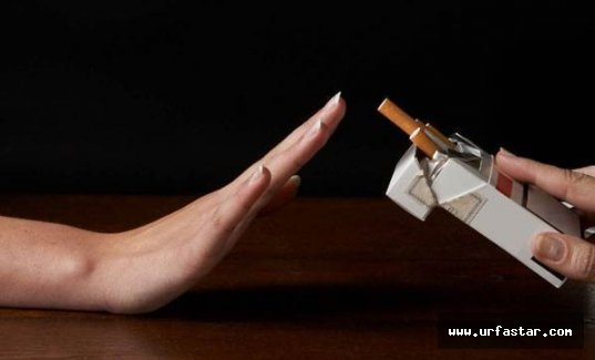 Sigara paketleri raftan kalkıyor