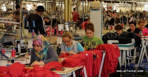Türkiye'nin yüzde kaçı işsiz?