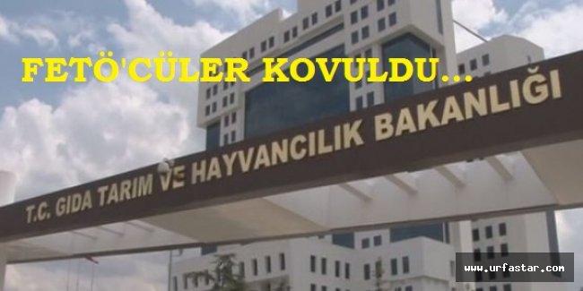 BAKAN ÇELİK TALİMAT VERMİŞTİ...