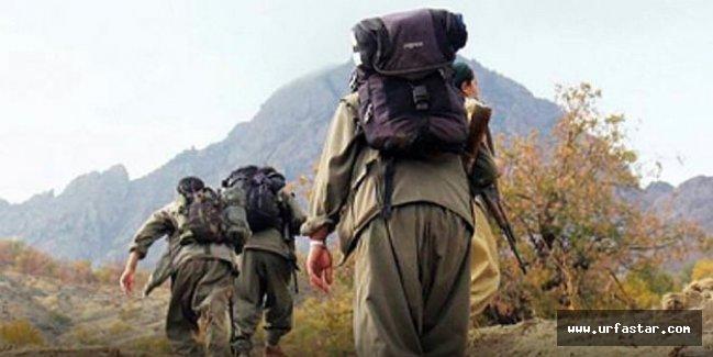 PKK'dan kaçıp Urfa'da askere sığındılar