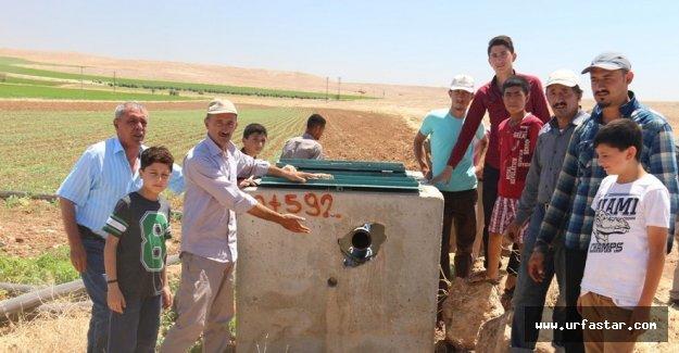 Urfa'da çiftçilerden şok iddia..