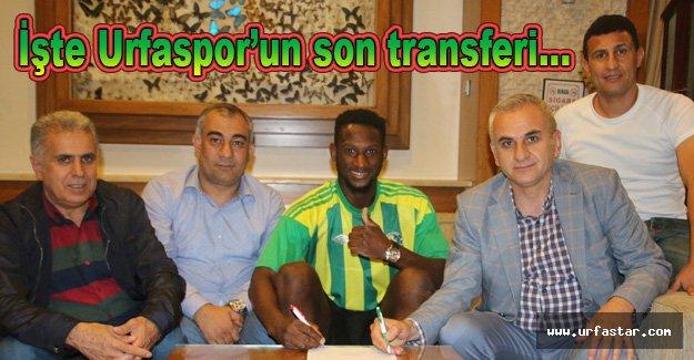 Urfaspor'dan Gambiyalı transfer...