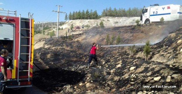 Ormanlık alanda yangın çıktı