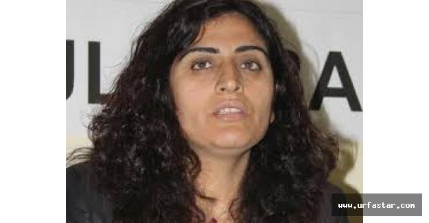 DBP Eş Başkanı tutuklandı