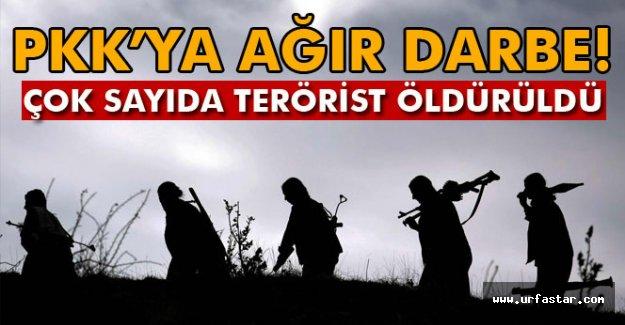 Teröristlere ağır darbe