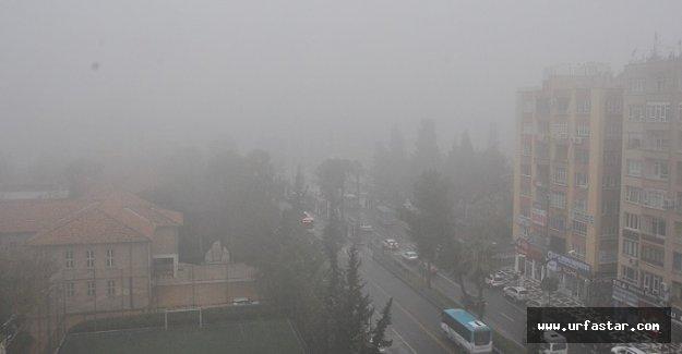 Urfa'da yoğun sis