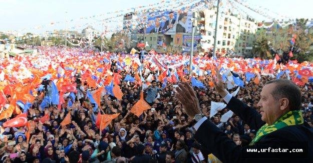 Erdoğan'ın Urfa ziyareti ile ilgili çarpıcı detay...