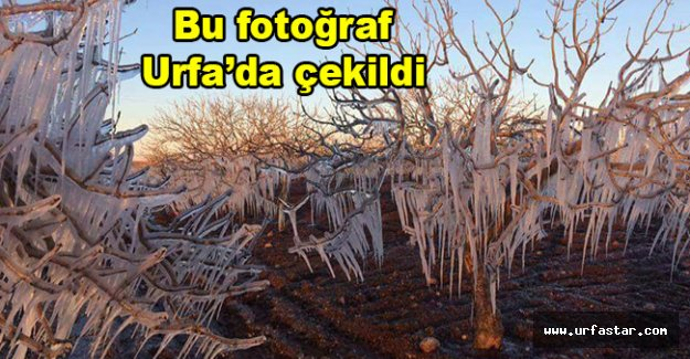 Burası Kars veya Erzurum değil!
