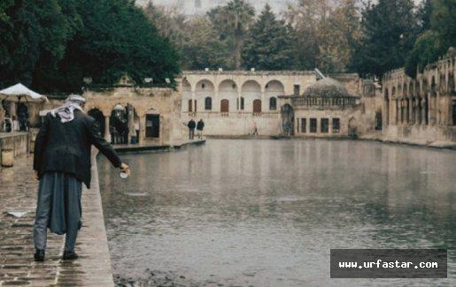 Dünyayı gezdi, Urfa'ya hayran kaldı