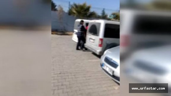Urfa'da oto hırsızlık çetesi çökertildi