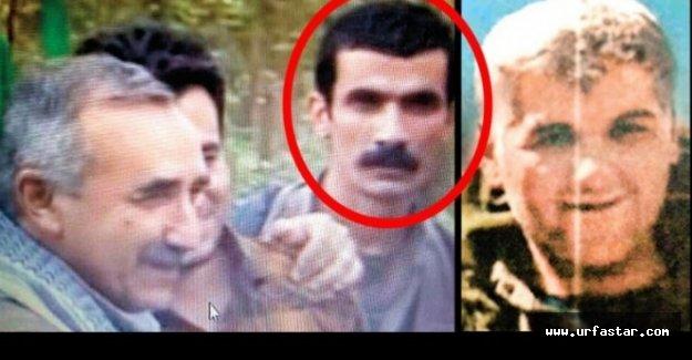 Viranşehir saldırısının planlayıcısı o terörist çıktı