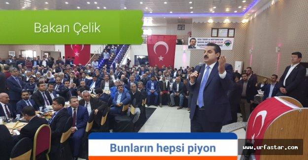 Bakan Çelik Viranşehir'de sert konuştu
