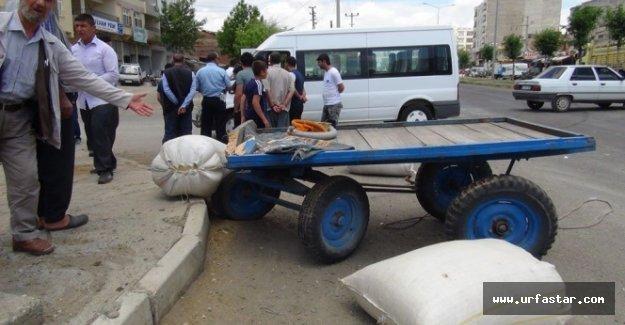 Urfa'da öğrenci servisi at arabasıyla çarpıştı