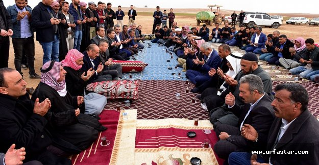 Ceylanpınar'da Kan Davası Barışla Sonlandı