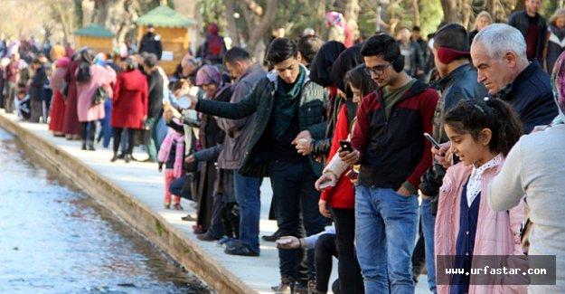 İşte Urfa'nın yeni nüfusu...