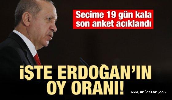Erdoğan son ankette çıkan oy oranı yüzde...