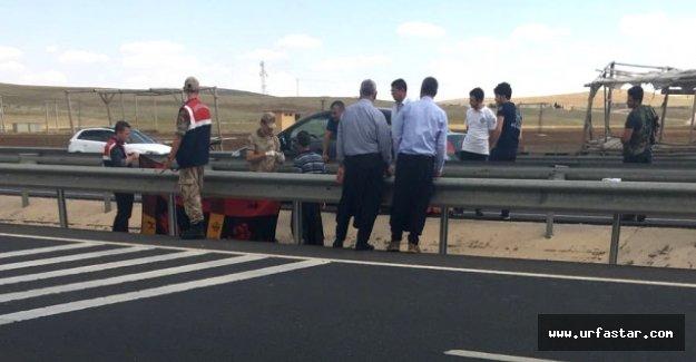 Urfa'da Yol Kenarında Ölü Bulundu