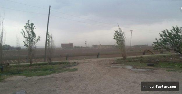 Şanlıurfa'da Yağmur Etkili Oldu