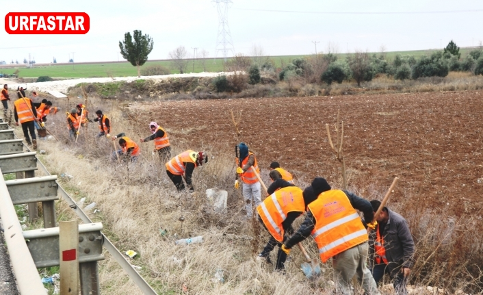 Büyükşehir 13 ilçede ağaçlandırma seferberliği başlattı