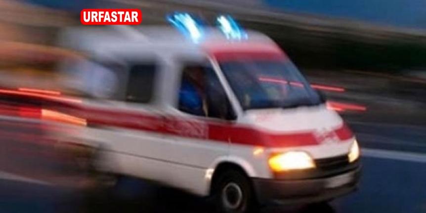 Urfa'da feci ölüm