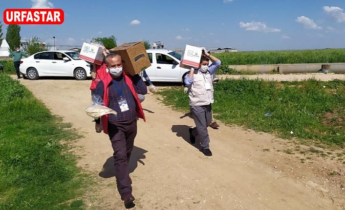 Urfa'da yardımlar sürüyor