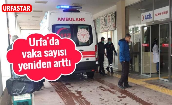 Urfa'da yeni vaka sayısı açıklandı...