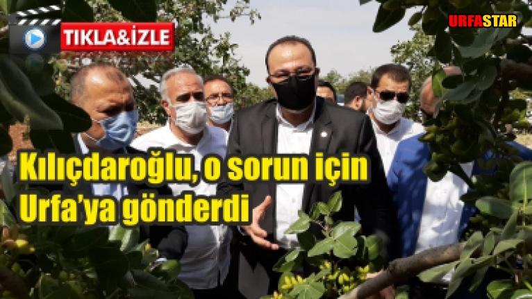CHP heyeti, Urfa'da incelemelerde bulundu...