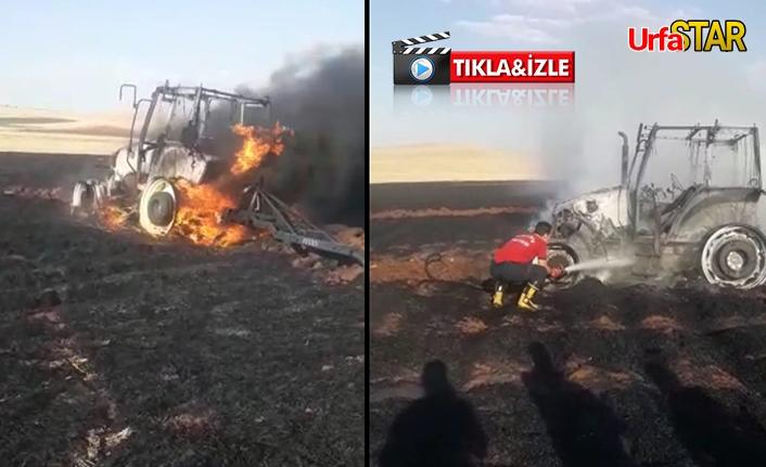 Urfa'da 200 dönüme ekili buğday yandı