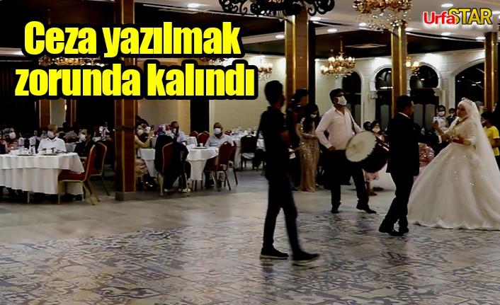 Urfa'da 125 düğün denetlendi