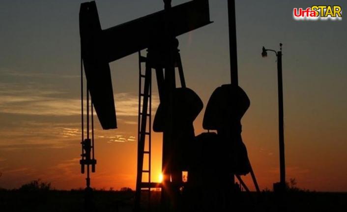 Urfa'ya petrol arama için ruhsat verildi