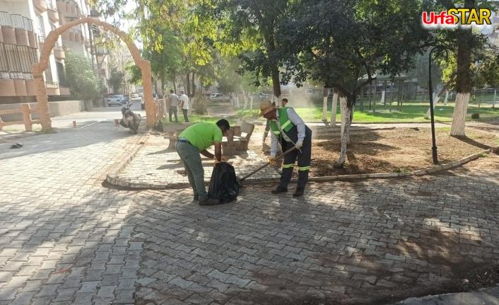 Viranşehir'de sonbahar temizliği başladı