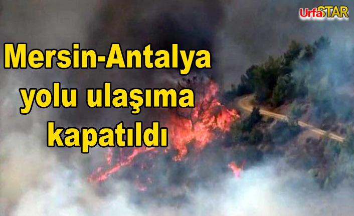 Bir orman yangını da o bölgede çıktı