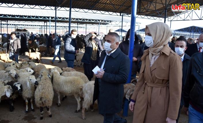 Hayvan pazarını ziyaret etti