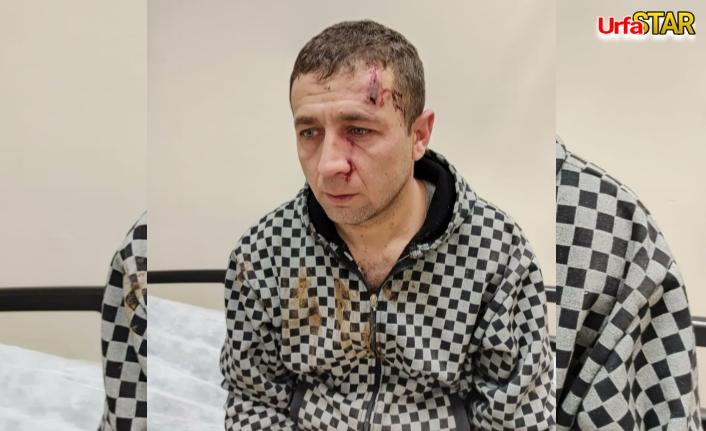 Urfa'da, veteriner sert darbe aldı!