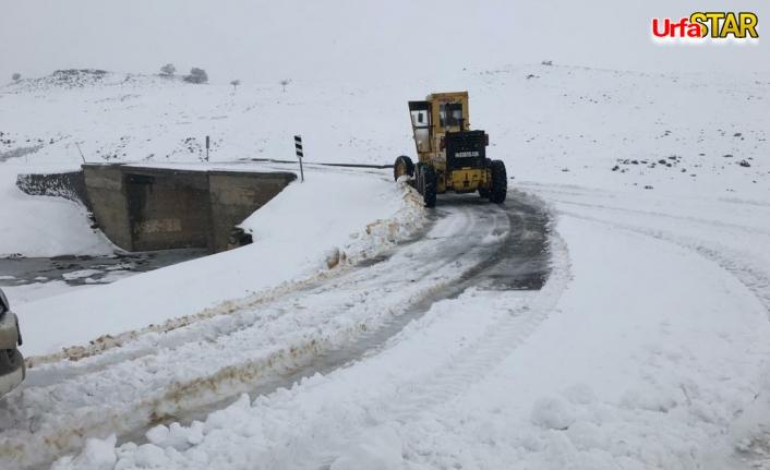 Siverek'te karla mücadele sürüyor