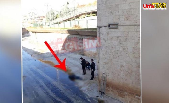 Urfa'da şüpheli ölüm