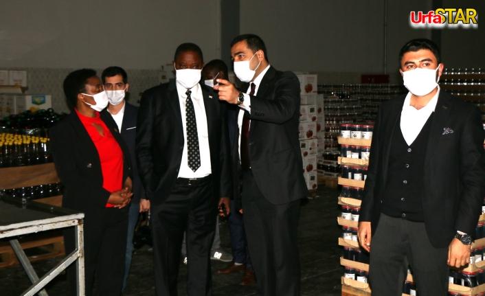 Büyükelçi ve Konsolos Urfa'ya özel olarak geldiler