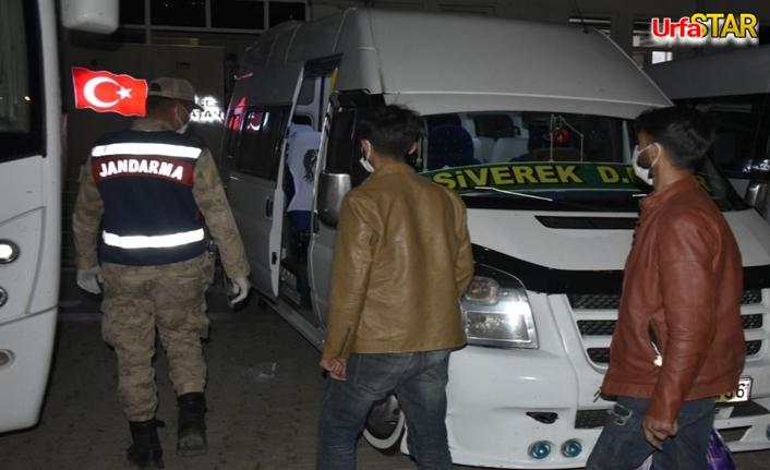 Siverek'te 101 kişi yakalandı